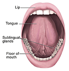 mouth-and-tongue-cropped